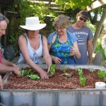 Organic Aquaponics Workshop, Jan 21 2012
