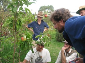 Sustainable Orchard Management with Peter Coppin July 21 2012