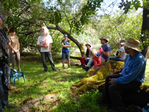 "Learning from the author of the well known ""Permaculture Plants"" book Jeff Nugent in a shady grove at his property"