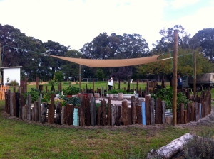 a simple goose proof fence made with old fence posts