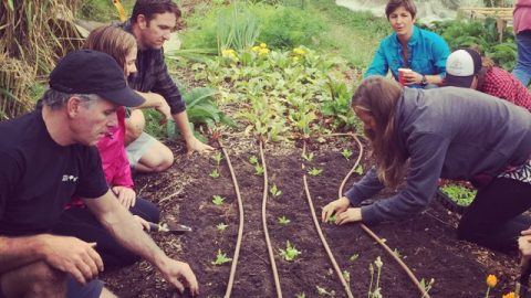 How much hands on gardening is in a PDC?